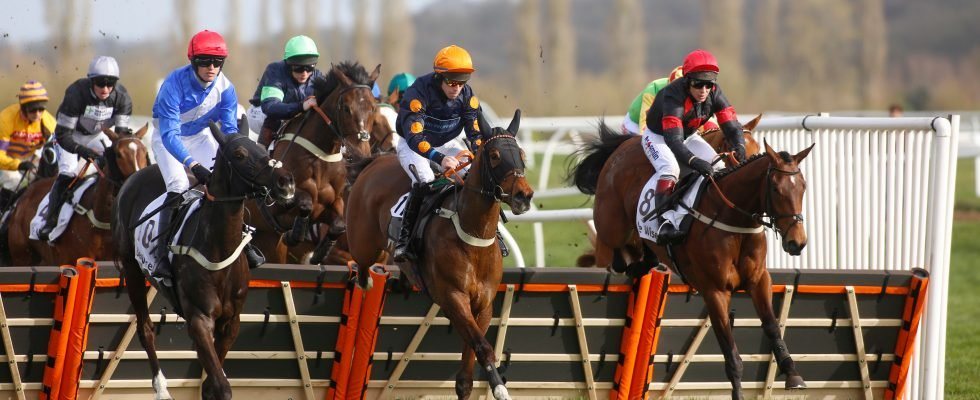 Templegate's racing tips: Warwick, Chelmsford, Newcastle and