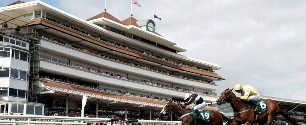 Best horse racing tips for today's action at Bath, Catterick